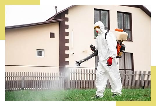 Mosquito Control in Dallas and Fort Worth, TX