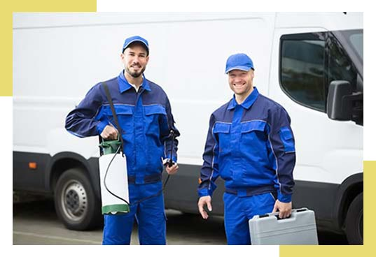 Mosquitoes and Pest Control Services