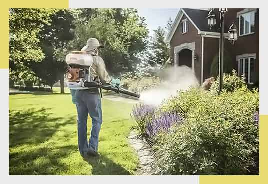 Spraying Mosquitoes in Infested Area
