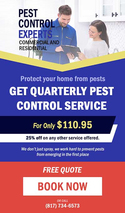 Pest Control Services Special Offer